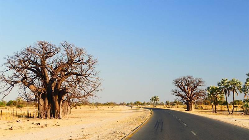 Owamboland