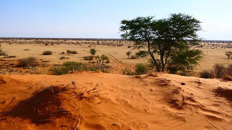 Dune Kalahari